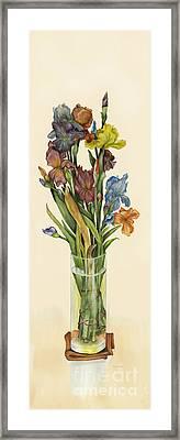 irises in Vase Framed Print by Nan Wright
