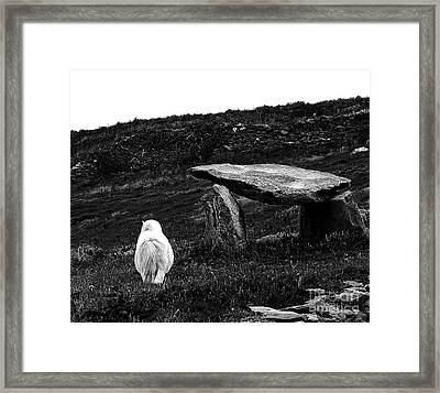 Irish Standing Stones Framed Print by Patricia Griffin Brett