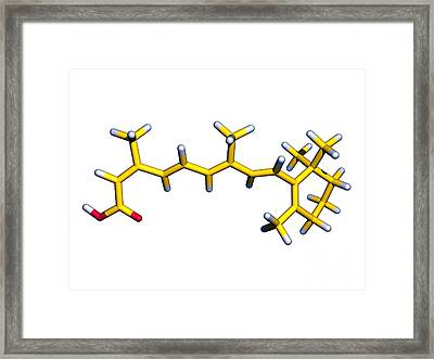 Isotretinoin Anti-acne Drug Framed Print by Dr. Tim Evans