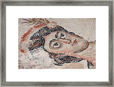 Israel, Lower Galilee, Floor Mosaic Framed Print by Ellen Clark