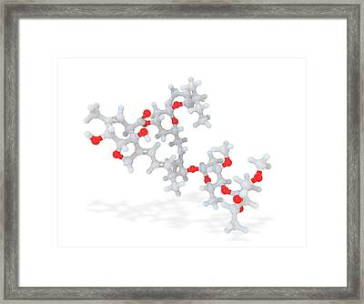 Ivermectin Anti-parasite Drug Molecule Framed Print by Ramon Andrade 3dciencia