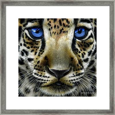 Jaguar Cub Framed Print by Jurek Zamoyski