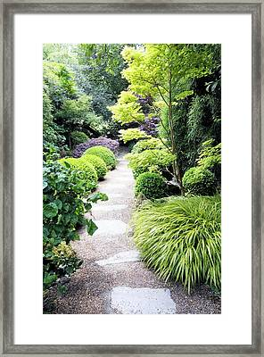 Japanese Garden Framed Print by Anthony Cooper/science Photo Library