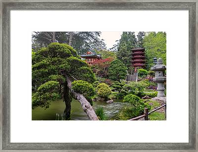 Japanese Tea Garden - Golden Gate Park Framed Print by Adam Romanowicz