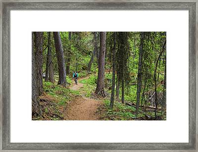 Jared Lynch Mountain Biking The North Framed Print