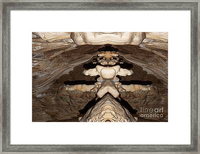 Stone Cteature Framed Print by Michal Boubin