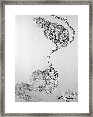Jay Cock And Squirrel Kit Framed Print