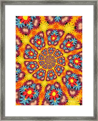 Kaleidoscope Daisies Framed Print by Amy Cicconi