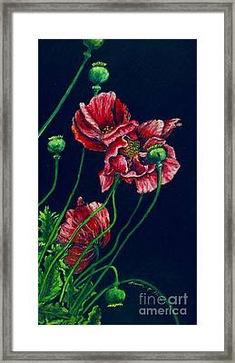 Kara's Poppies Framed Print