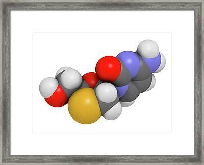 Lamivudine Antiviral Drug Molecule Framed Print