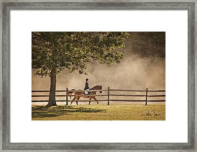 Last Ride Of The Day Framed Print by Joan Davis