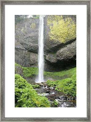 Latourelle Falls 4d Framed Print by Rich Collins