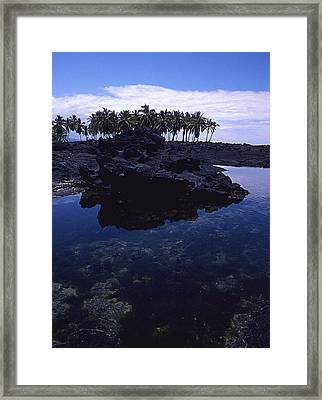 Lava Palms Framed Print by Ron Regalado