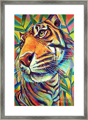 Le Tigre Framed Print by Robert Phelps