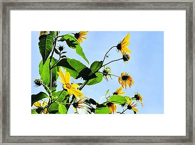 Let It Bee Framed Print
