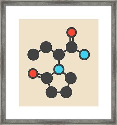 Levetiracetam Epilepsy Drug Molecule Framed Print