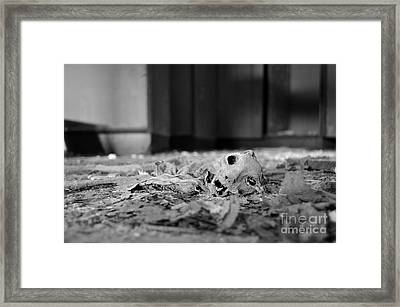 Life Number 10 Framed Print by Luke Moore