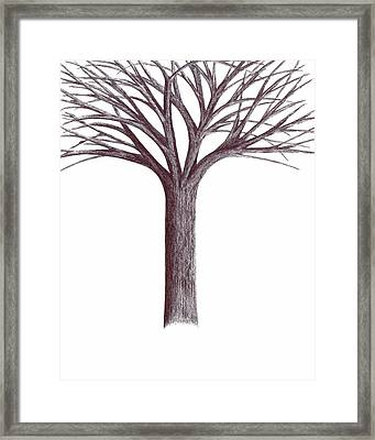 Framed Print featuring the drawing Second-generation....tree Without Roots by Giuseppe Epifani