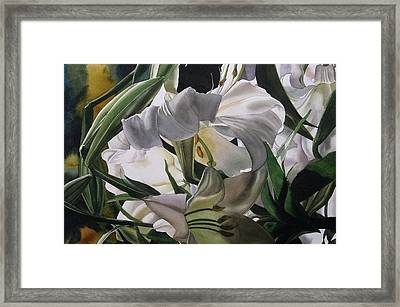 Lily In White Framed Print by Alfred Ng