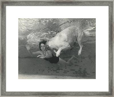 Ln1794 Honey - The Under Water Dog Framed Print by Retro Images Archive