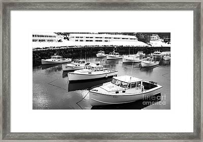 Lobster Boats Framed Print by Christy Bruna