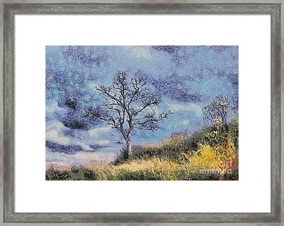 Lonely Tree Framed Print by Odon Czintos
