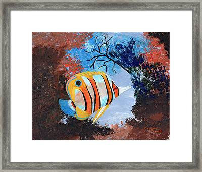 Longnose Butterfly Fish Framed Print