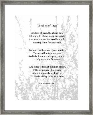 Loveliest Of Trees Framed Print