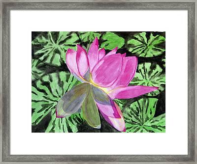 Lovely Lily Framed Print by Debi Singer