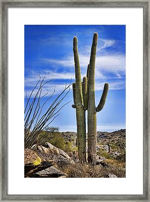 Loving Couple Framed Print by Kelley King