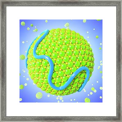 Low-density Lipoprotein Framed Print by Maurizio De Angelis