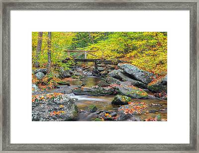Framed Print featuring the photograph Macedonia Brook by Bill Wakeley