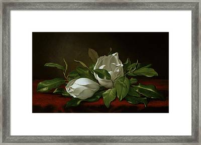 Magnolia Framed Print by Martin Johnson Heade