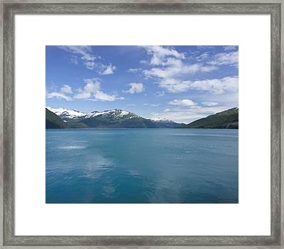 Majestic Framed Print by Kim Hojnacki