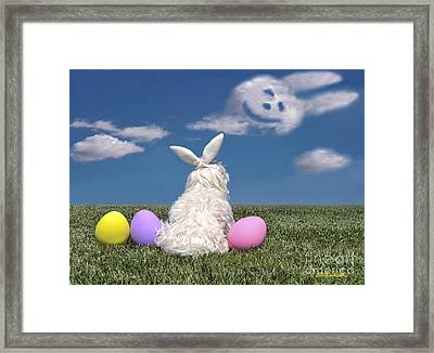 Maltese Easter Bunny Framed Print