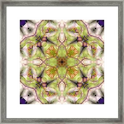 Mandala 128 Framed Print