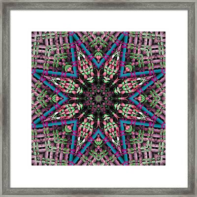Mandala 31 Framed Print