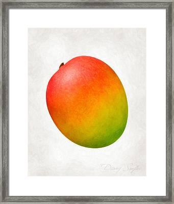 Mango  Framed Print by Danny Smythe