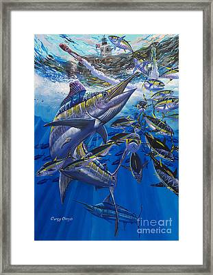 Marlin El Morro Framed Print by Carey Chen