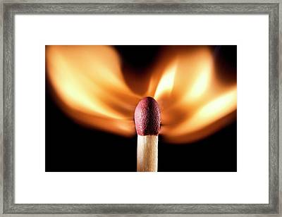 Matchstick On Fire Framed Print by Science Photo Library
