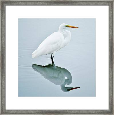 Me And My Shadow Framed Print by Paulette Thomas