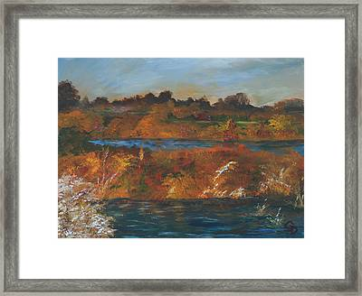 Mendota Slough Framed Print