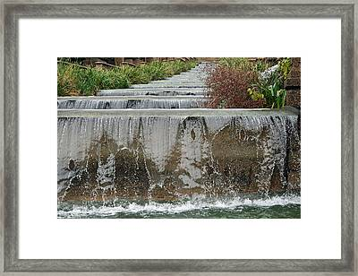 Meridian Hill Park Framed Print by Cora Wandel
