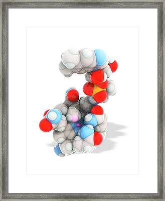 Methylcobalamin Framed Print