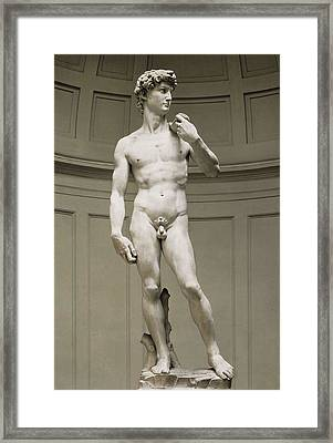 Michelangelo 1475-1564. David Framed Print by Everett
