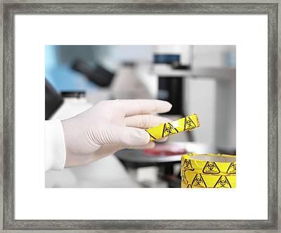 Microbiology Lab Framed Print by Tek Image