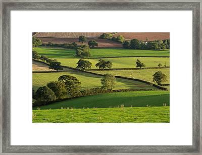 Mid Devon Fields Framed Print