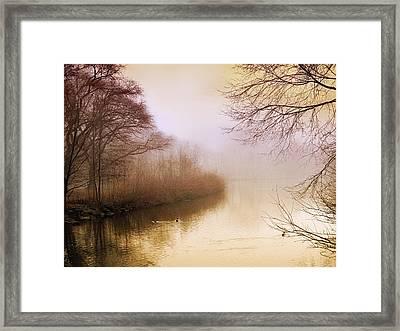 Misty Morn Framed Print by Jessica Jenney