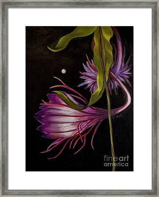 Moonflower 2 Framed Print by Dian Paura-Chellis