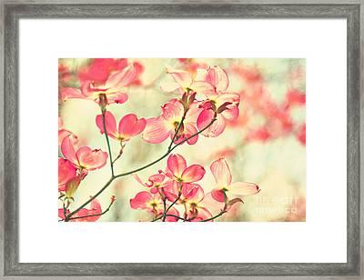 Morning Light Framed Print by Sylvia Cook